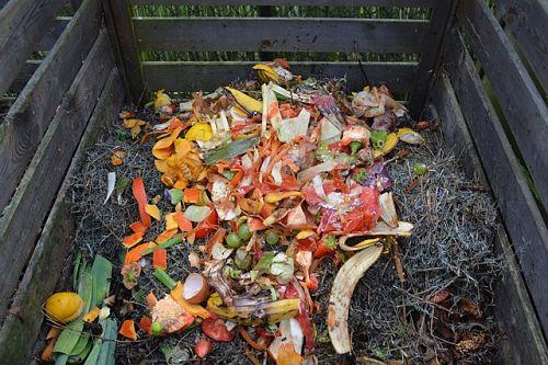 Cómo se puede reciclar la basura orgánica
